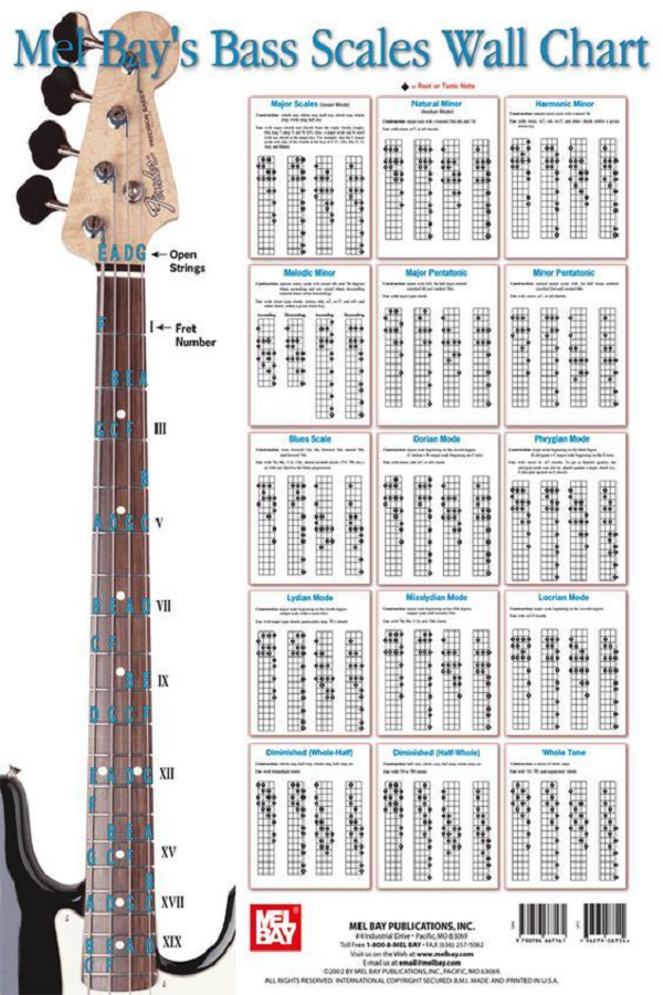 Bass Scales Wall Chart Big Poster