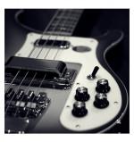 Rickenbacker Bass Canvas Print